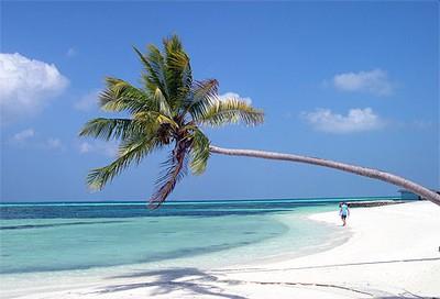 Les Maldives vous tendent les mains !