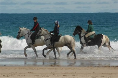 L'Irlande à cheval