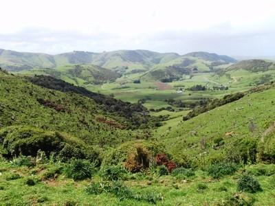 Paysages verts de Papouasie Nouvelle-Guinée