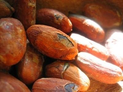 feve-cacao