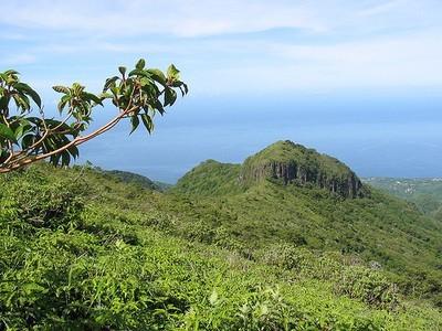 Quoi voir en Martinique ?