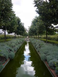 promenade arbres eau