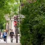 Quelles sont les meilleures adresses pour sortir dans le quartier de Montparnasse ?